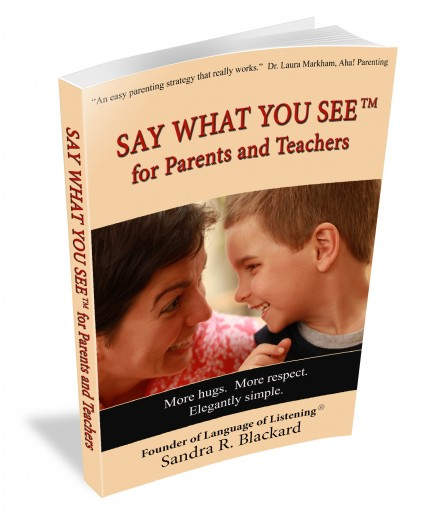 SAY WHAT YOU SEE® Handbook