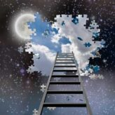 Fight-Flight-Freeze: A Natural Ladder from Anxiety to Freedom